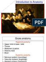 introduction to anatomy ppt