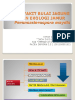 Presentasi No_3_0_Penyakit Bulai Jagung Dan Ekologi Jamur Peronosclerospora Maydis