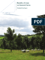 Benefits of trees to livestock farms - evidence report