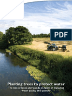 Planting trees to protect water - evidence report