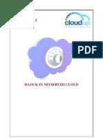 Articolo Lock-In Nei Servizi Cloud