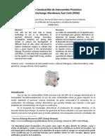 Celdas de Combustible PEM Artículo
