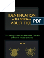 Identification of US ticks
