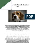 Facilisimo - Como Educar a un Beagle Para Que No Se Porte Mal.pdf