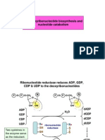Deoxyribonucleotidos Sintesis y Degradacion