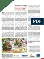 LRA145 Experiencia Mercado Huancaro VSF