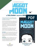 Maggot Moon by Sally Gardner - Q&A