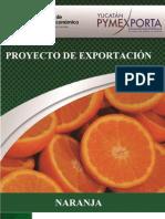 Manual Naranjas