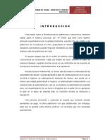 REESTRUCTURACIÓN PATRIMONIAL E INSOLVENCIA FINAL