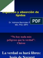 Lipoproteinas Valmore Bermudez Modificada