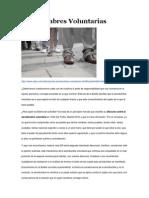Servidumbres Voluntarias artículo Juan Pundik Etienne Boetie