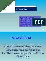 (6) Nematoda