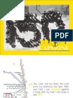 Capstone Campaign Book