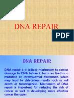 DNA Repair r