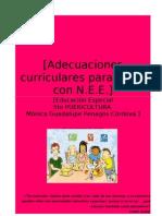 adecuaciones curriculares para niños con N.E.E.