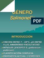 Salmonella 06