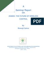 B209013 Seminar Report 1