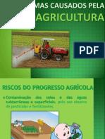 Problemas Causados Pela AGRICULTURA