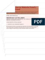 Comentarios en Materia Penal y Procesal Penal
