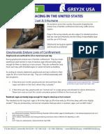 Greyhound Racing is Cruel & Inhumane
