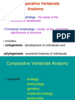 2 - Comparative Vertebrate Anatomy (1)