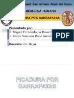 Picadura Por Garrapatas [Autoguardado]2