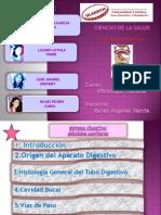 Carol Histologia Actividad 3 Tarea