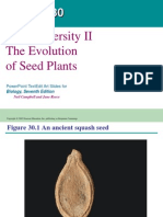 Ch[1]. 30 Plant Diversity II