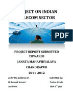 project on telecom sector