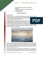 17. Los Bonos de Carbono Lectura 2009