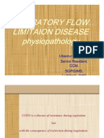 expiratory flow limitation disease