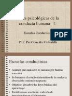 PP Basespsicol1
