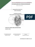 Cuaderno de Ejercicios en Apoyo a Temas Selectos de Fisica II