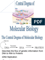 central-dogma-of-dna-1201627180232055-2