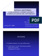Il Sistema Motorio