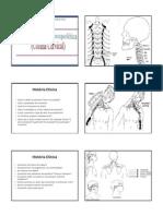Avaliacao Musculoesqueletica Da Coluna