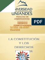 Trabajo de Derecho Constitucional