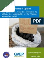 Briquette Businesses in Uganda