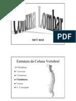 Biomecanica Da Coluna Lombar