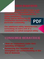 Consumer Behaviour Ras Culuz