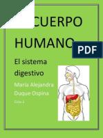 El Cuerpo Humano a.d