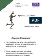 sistema óseo aparato locomotor (1)