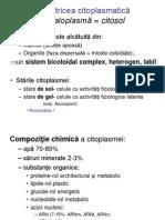 C5_Drojdii2