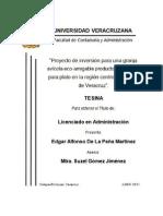TESINA EDGAR DE LA PEÑA