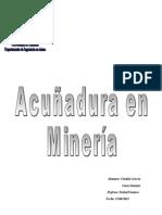 Informe Acuñadura.doc