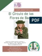 Apuntes+El+Circulo+de+Las+Flores