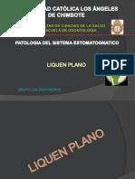 Foro de Investigacion Formativa Patologia II