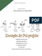 00 MACACO MEC+éNICO - EXEMPLO DE UM PROJETO - (OSCAR)  REVISADO EM AGOSTO DE 2010