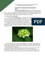 Introducción a GIMP Tratamiento de imágenes con GIMP Tutoriales Academia Usero