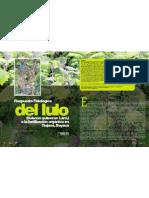 Respuesta Fisiológica del lulo (Solanun quitoense Lam.) a la fertilización orgánica en Tinjacá, Boyacá